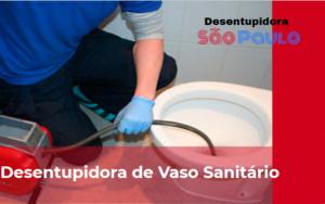 Desentupidora-de-vaso-sanitário